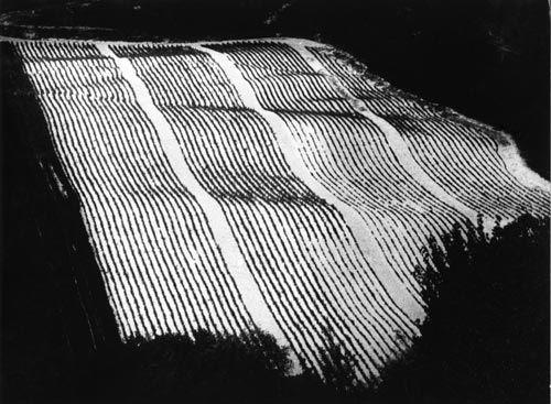 Mario Giacomelli Paesaggi