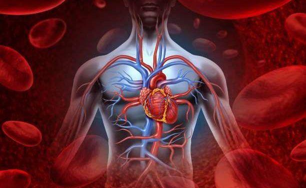 Η ομάδα αίματος 0 είναι ένας αρχέγονος τύπος αίματος και προέρχεται από τους προγόνους μας, οι οποίοι ήταν επιθετικοί και πανούργοι κυνηγοί. Ακόμη και