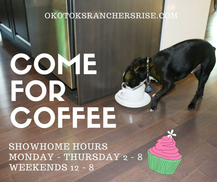 Our showhomes are open right up until December 23rd! Come on in and join us for coffee and have a look at your new home for 2015