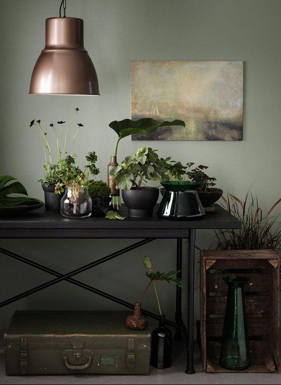 Plant een kamerplantje in een glazen vaas. De wortels die zo blootliggen geven een mooi lijnenspel. | #STUDIObyIKEA #IKEA #IKEAnl #trend #groen #SINNERLIG #sierpot #interieur