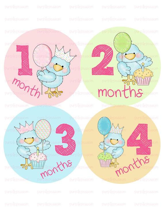 Monthly Onesie StickersLittle BirdieFast by PurplePossom on Etsy, $9.00