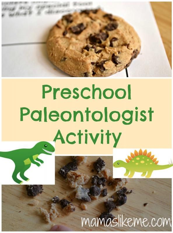 Let the kids explore paleontology with chocolate chip cookies!  So much fun! #dinosaurs #preschool