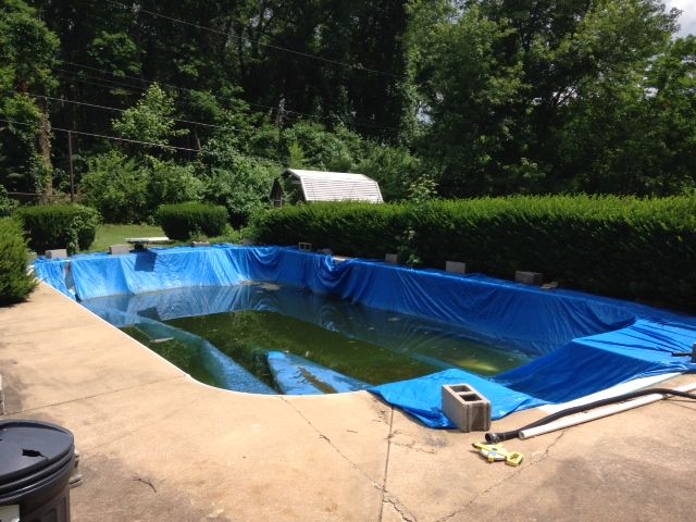 26 Best Swimming Pool Inspection Services Images On Pinterest Swimming Pools Pools And