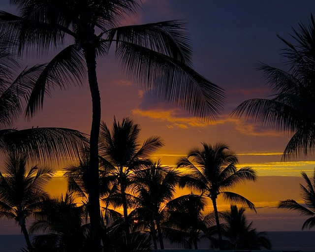 I wish the back of my eyelids looked like this...: Stunning Sunsets, Sunsets Hawaii, Hawaiian Sunsets, Hawaii Photos