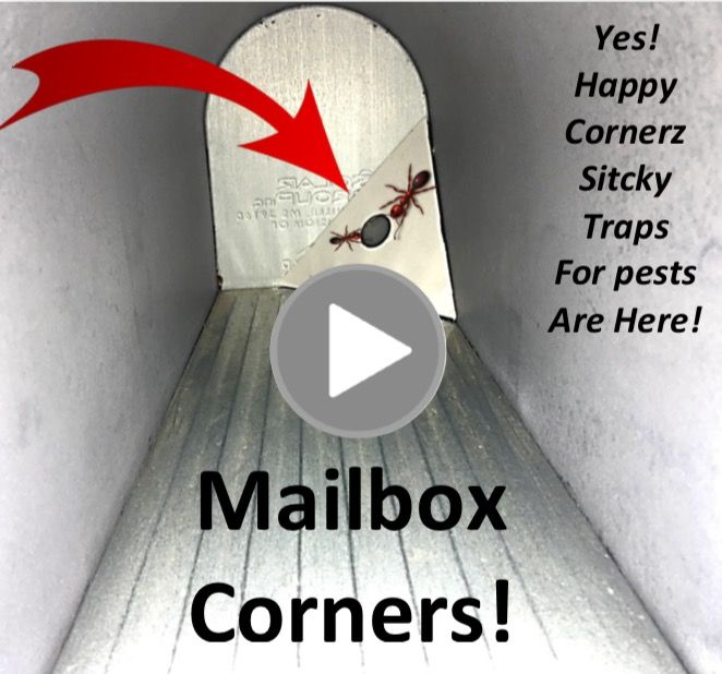 Got Mail? Watch this and see how Happy Cornerz is the hero of millions of mailboxes for people. Happy Cornerz is the world's only patneted corner trap #stickytraps (glue trap) for your corners to monitor & capture pests. Pick any corner high or low it's your choice! This trap is by the most stylish and fashionable sticky trap on the market and now you can use sticky traps with more safety & even for your mailboxes! Visit happycornerz.ocm to own these DIY traps today! Tweet @stickytraps :)