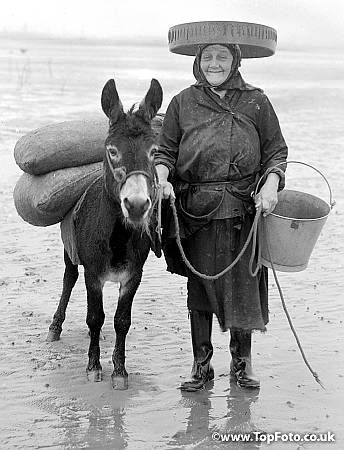 One of the cockle ladies of Penclawdd South Wales Mrs Lizzie Davies had worked on the sands for most of her life