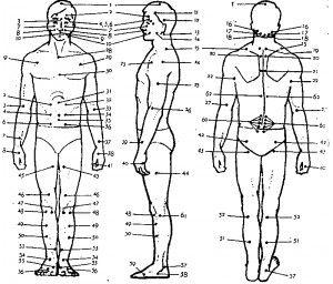 Masáž, pri ktorej ovplyvňujeme pomocou meridiánov a akupresúrnych bodov pohybový systém, ako aj ochorenia vnútorných orgánov. Indikácie: Kontraindikácie: Najúčinnejšie akupresúrne body Alergia – senná nádcha (3, 4, 8, 9, 38), Astma (28, 29, 33, 37, 20), Bolesti – bedrá (42, 43, 45,52, 57, 59, 60), Bolesti – hlavy (1, 2, 3, 4, 5, 6, 11, …