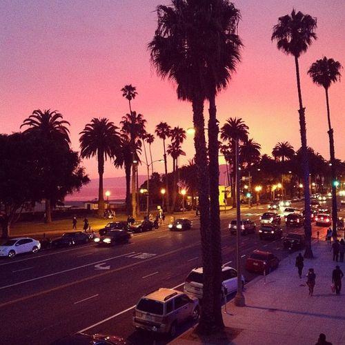 people street night city Los Angeles california palms ...
