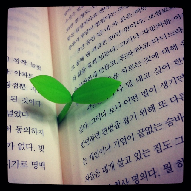 Baby leaf.