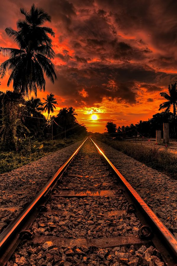 ~~My Journey ~ orange sunset, coconut trees and railroad tracks by Jason Matthew Tye~~