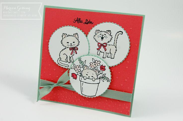 Stampin up, Pretty Kitty, Glueckwunschkarte, Geburtstag