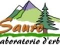Il Laboratorio D'erbe Sauro proroga il codice sconto del 10% fino al 30 settembre