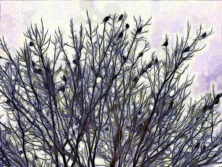 An Ear Full Of Waxwing by Leslie Montgomery
