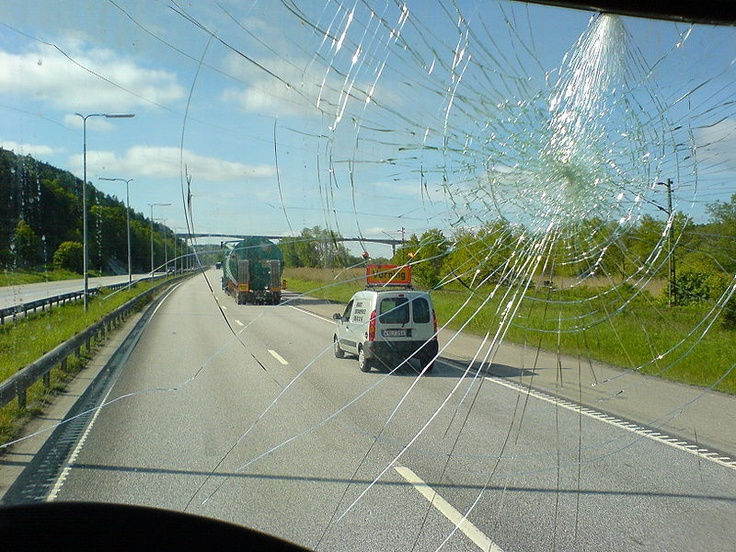 Can bird poop crack a car windshield? Auto Glass Houston