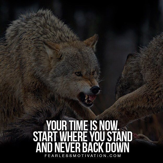 @fearlessmotivationofficial right on point with this one. Never back down! Follo... #success. #quotes #rich #wealth #prosperity #cash to achieve #passion #dreams #goals #entrepreneur. #Get your #6figures #income #secret http://wealthyguru.com