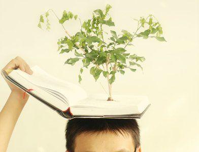 Дневник успехов и благодарности: Нет границ человеческому разуму. Стивен Хокинг