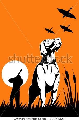 Hunting dog with hunter in the background  #hunter #retro #illustration