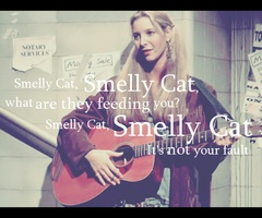 hahahaha phoebe is the best!!: Smelly Friends, Best Friends, Friends Tv, Smellycat, Friends Memories, Funny Stuff, Classic Phoebe, Smelly Cat Songs, Smelly Caaaaat