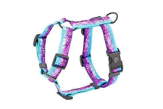 Violet dog harness  Personalized dog harness  Adjustable dog