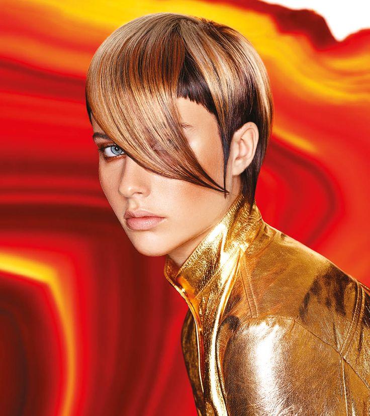 Minerasia Framesi Hair Collection