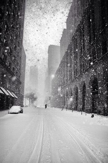Martin Froyda New York in Blizzard