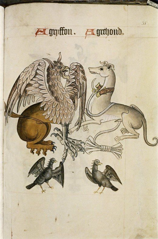 A griffin and a greyhound portrayed in a Tudor pattern book, c.1520. (The Bodlean Library via The Retronaut)