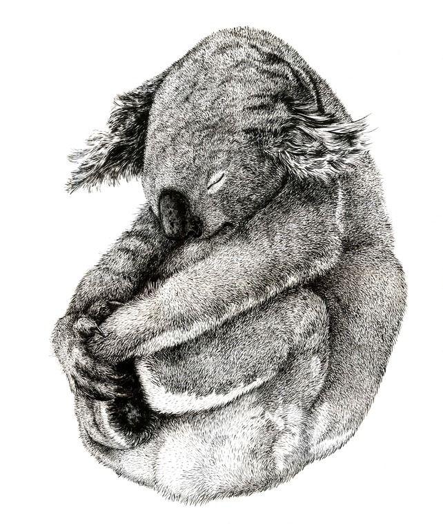 "Saatchi Online Artist: Dan Vuletici; Ink, 2011, Painting ""Koga"""
