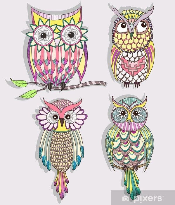 Set Of Cute Colorful Owls Wall Mural Pixers We Live To Change Colorful Owl Art Colorful Owls Owl Vector