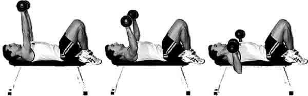 Développé couché exercice de musculation pour les pectoraux avec des haltères