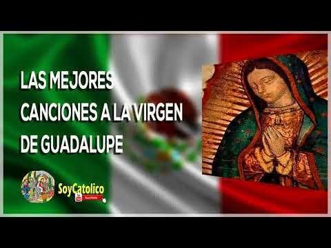 LAS MEJORES RANCHERAS A LA VIRGEN GUADALUPANA - Canciones Católicas a La...