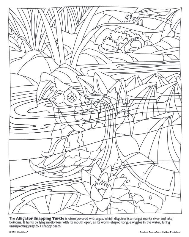 mind ware coloring pages - photo#21