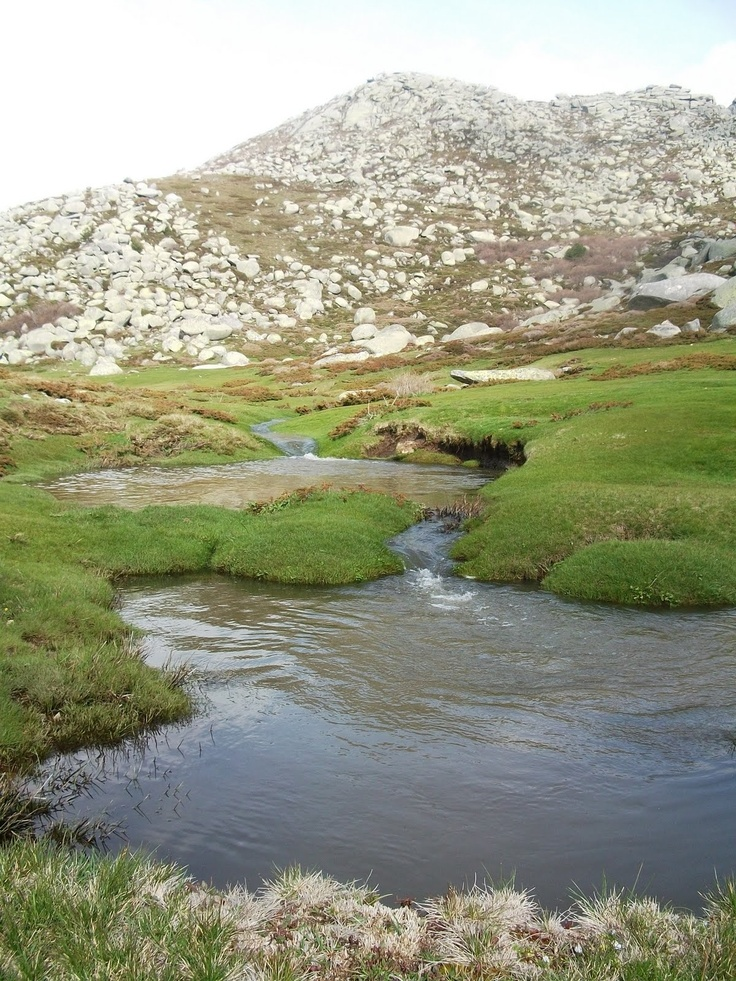 Plateau sauvage du Coscione www.louercorse.com