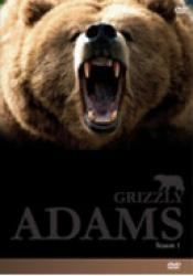THE LIFE AND TIMES OF GRIZZLY ADAMS DVD BOX SETS