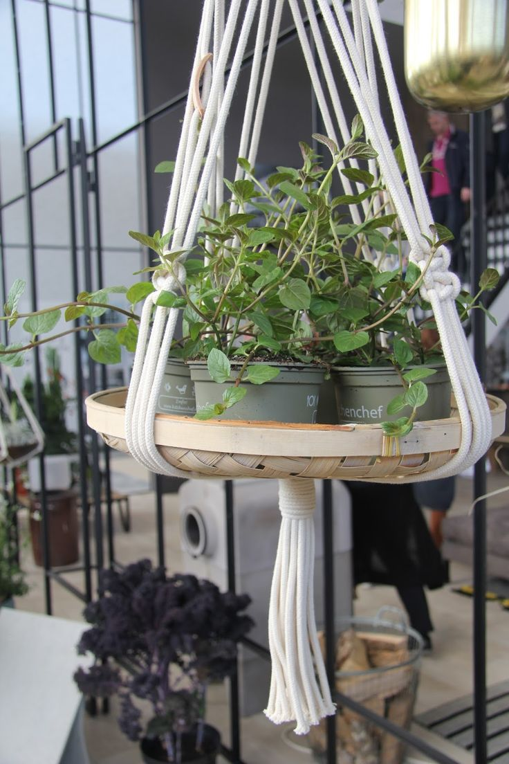1000+ images about * Garden / DIY * on Pinterest