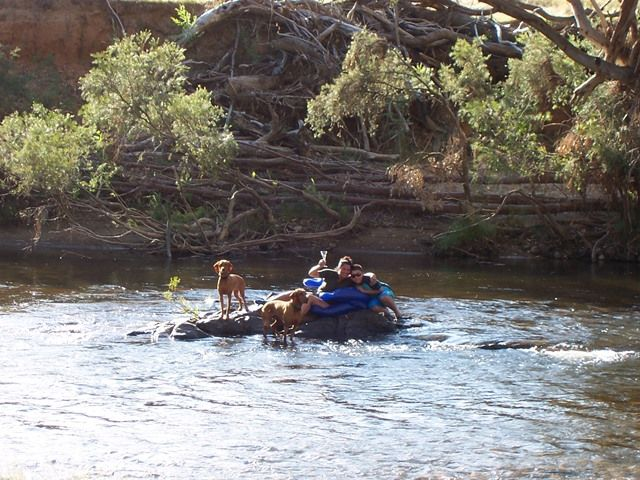 Diedre Miles and family enjoying the river. http://www.elmcottage.com.au/