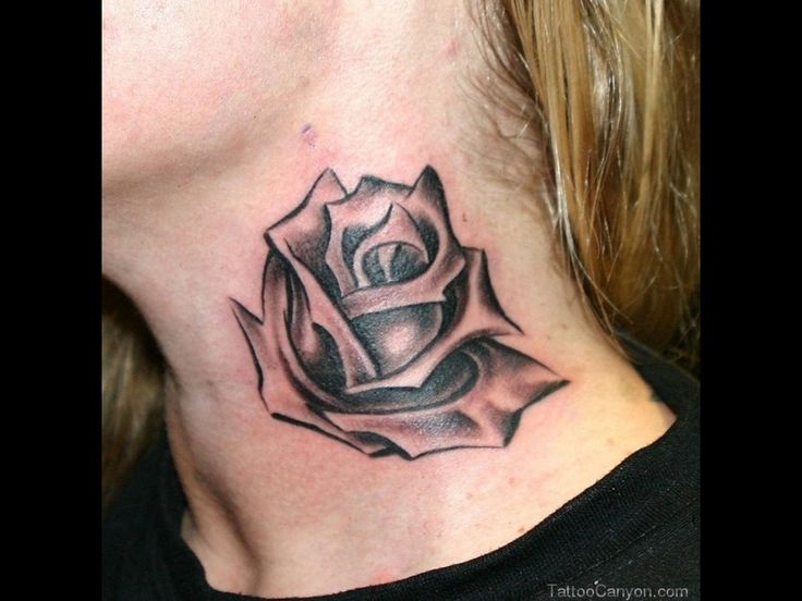 Black Rose Vine Tattoos Tattoo 16278 black rose
