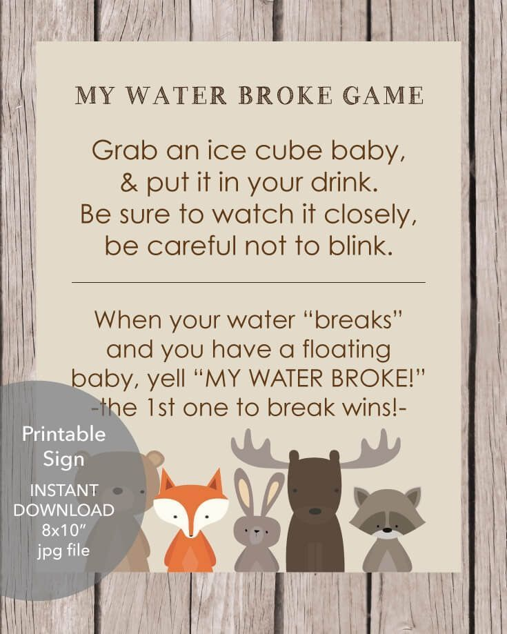 Printable What's In Your Purse Baby Shower Game – Woodland Animal Theme