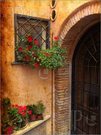 Stock photo available for sale at FeaturePics: Picture of Vintage image from Rome - Detail of wall decorated with red Geraniums - Trastevere, Rome, Italy.