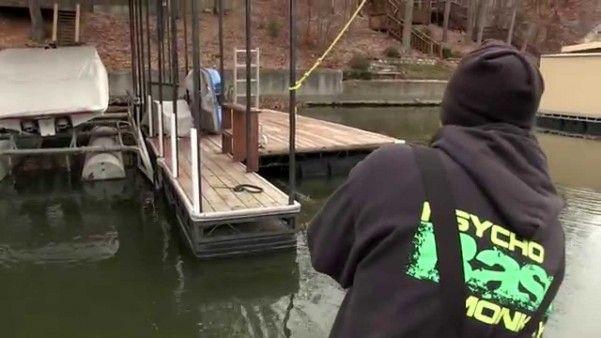 dock-skipping