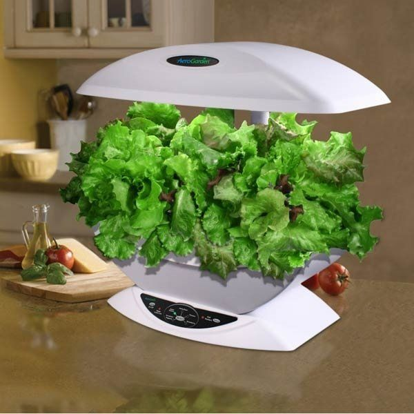 A Hydroponic Garden Is Ideal For Growing Vegetables At Any Time Of The Year  At Home. We Will Show You Some Creative Indoor Hydroponic Systems Which Will