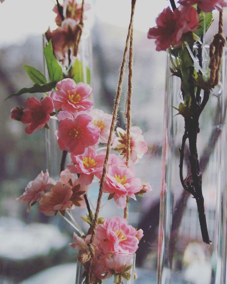 #kwiaty #wiosna #spring #kwiaciarniaszczecin #szczecin #flowergfits #gifts #sun