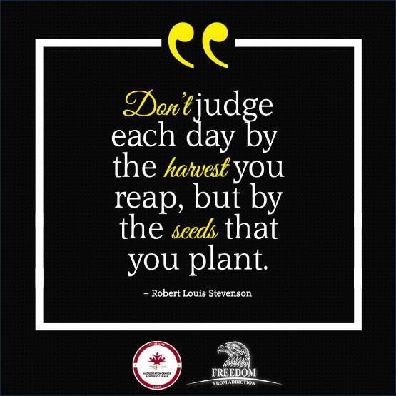 #quote #addiction