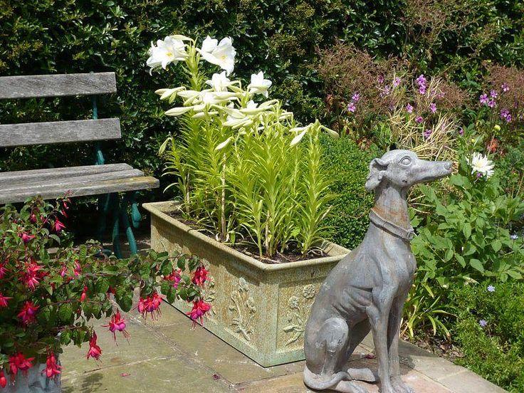 Best 14 Heritage Planters ideas on Pinterest | Plant pots, Planter ...