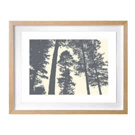 Heal's | Silverwood Framed Print By Paul Farrell - Graphic Art - Art - Accessories