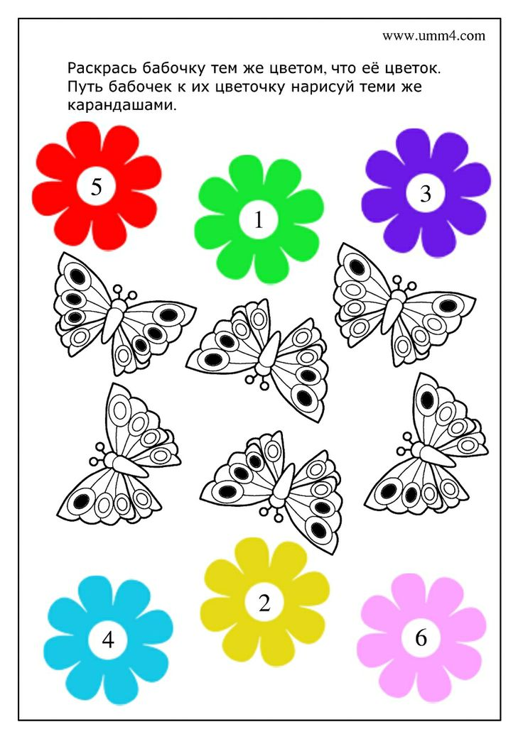 Tel de zwarte stippen op de vlinder, dan weet je naar welke bloem hij moet / logika-i-razvitie-vnimaniya-zadaniya-dlya-detej-