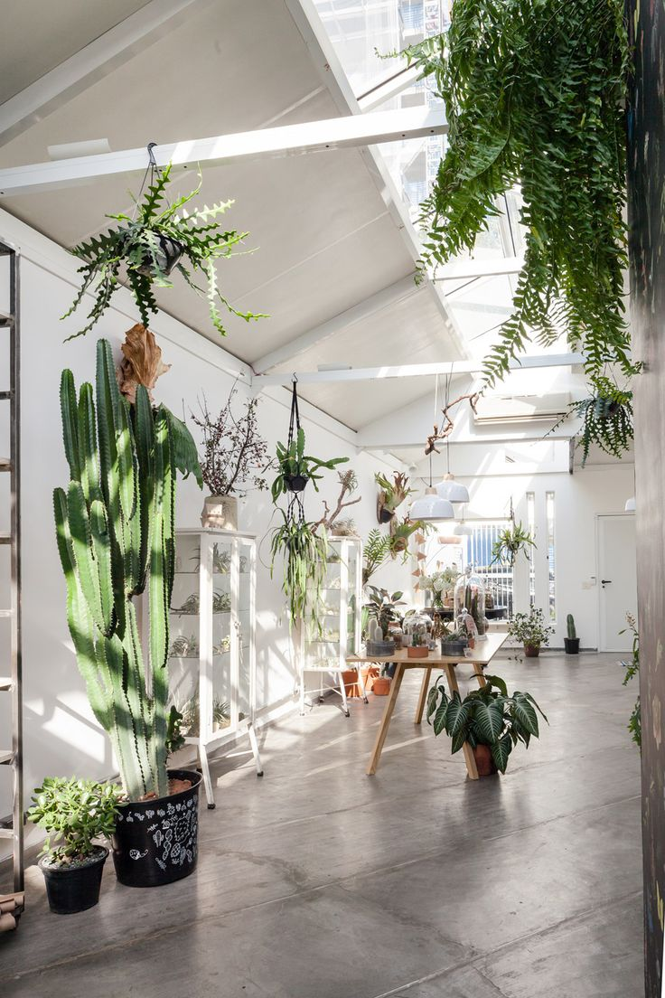 Brazilian studio Epicentro has overhauled an old building in São Paulo to create a space for a florist