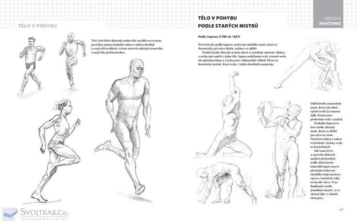 Nakladatelství Svojtka & Co. - Praktický průvodce kreslení – Anatomie