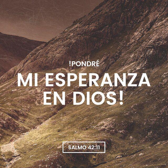 """""""¿Por qué te abates, oh #alma mía, Y por qué te turbas dentro de mí? Espera en #Dios; porque aún he de #alabarle, #Salvación mía y Dios mío."""" #Salmos 42:11 RVR1960 http://bible.com/149/psa.42.11.rvr1960"""
