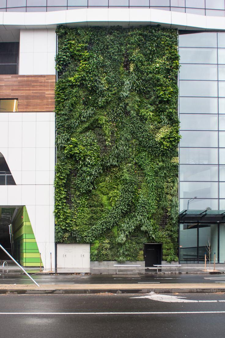 MediBank Green Wall, Docklands
