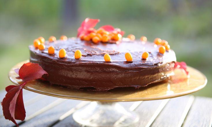 Jag har haft denna tårta i tanken länge! En chokladtårta med havtorn måste ju bara vara fantastisk Choklad och havtorn är som handen i handsken, kaffe med grädde, pricken över i, och alla andra sådana uttryck man kan tänka sig!Vi var ute på en promenad med kakan svalnade och hittade en massa fina löv som […]
